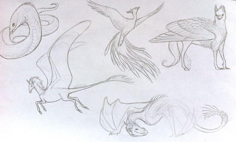 aspergers trends and fads, harry potter, aspergers,aspergers teen girl,aspergers drawing